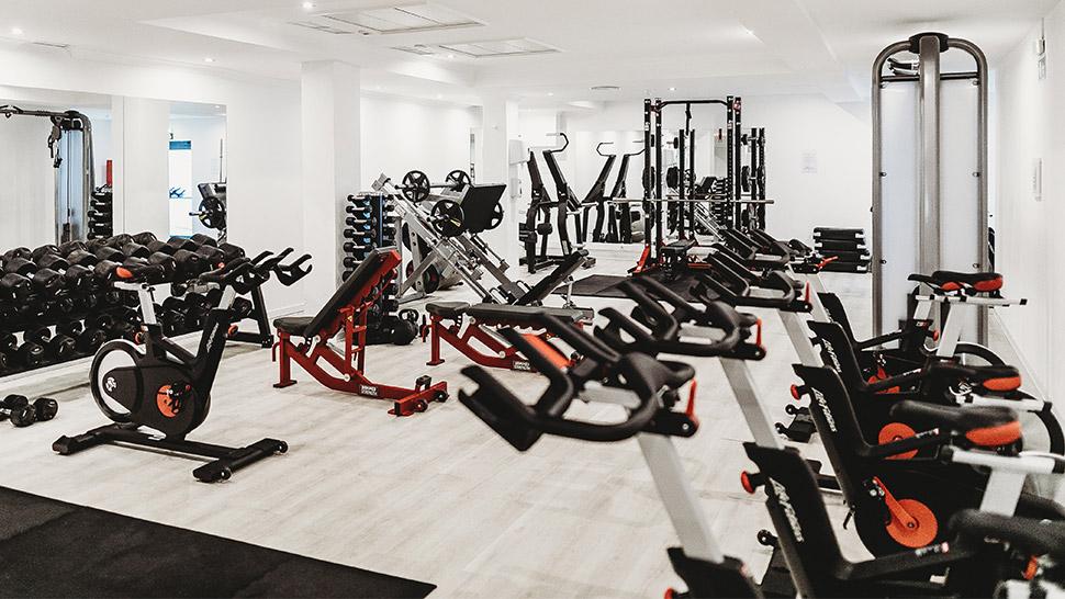 Modest Gym Equipment